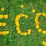 Energie Renouvelables Web